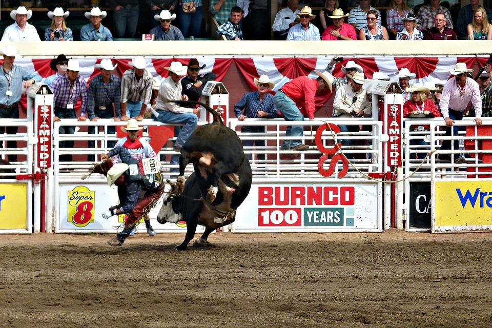 Calgary Stampede History And Calgary Stampede Events 2018
