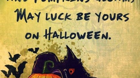 Halloween Black Cat Quotes And Sayings