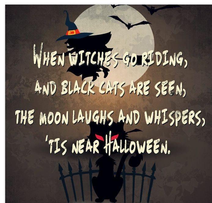 Happy Halloween Black Cat Wishes Quotes